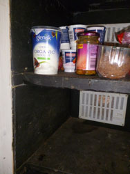 shelf detail in fridge