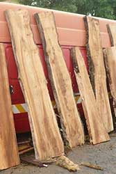 Selecting Wood Slabs